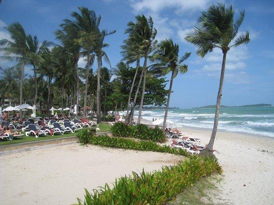 Centara Grand Beach Resort Samui: Centara Beach