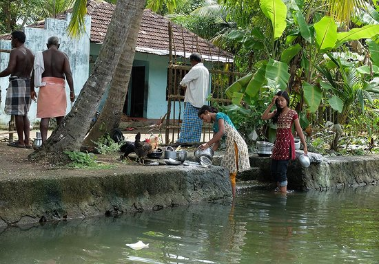 South Canal Holidays : Backwaters 2