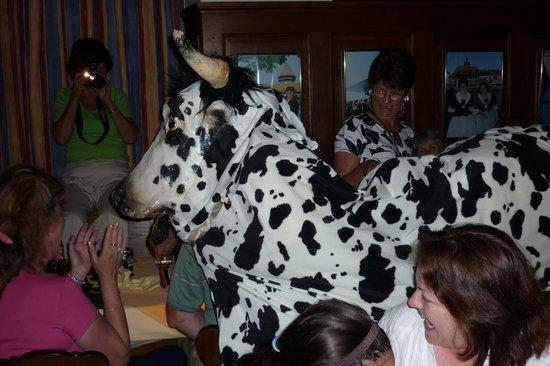 Stadtkeller Swiss Folklore Restaurant: The charging 'Cow'