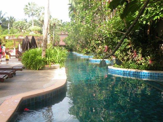 Kata Palm Resort & Spa: The Pool
