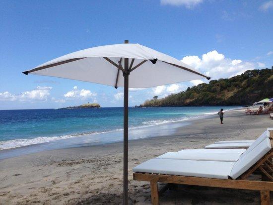 Aquaria : White sand beach