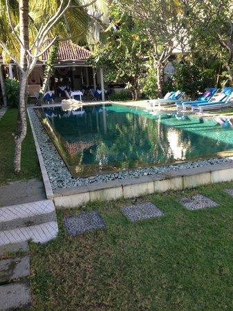 Aquaria : Vue sur la piscine