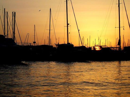 Giro dei Fossi di Livorno: il porto di Livorno