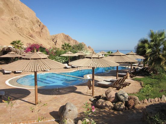 The Bedouin Moon Hotel: The pool