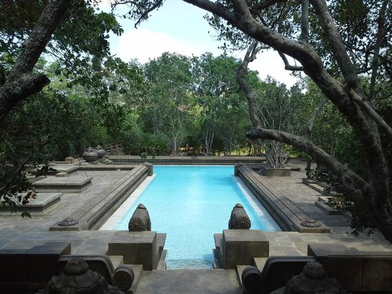 Swimming pool - Picture of Forest Rock Garden Resort ...