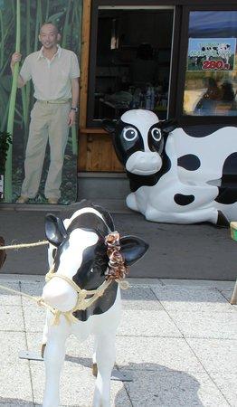 Michi-no-Eki Ashoro Ginga Hall 21: 入口の牛の置物と松山千春の写真