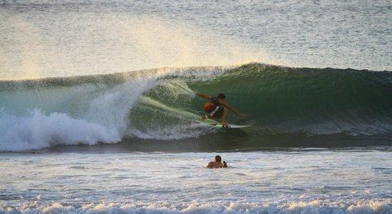 Prama Sanur Beach Bali : beach