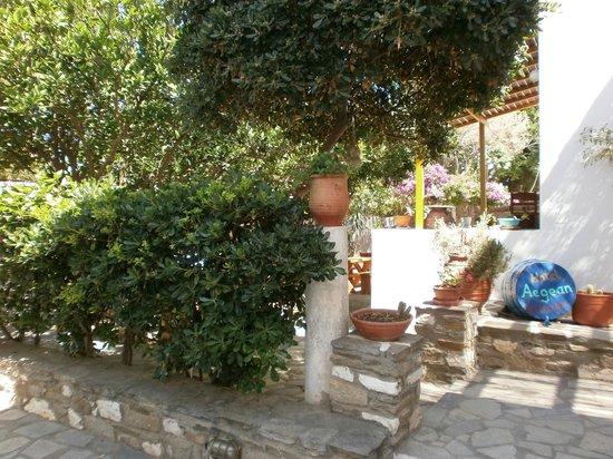 Hôtel Aegean Village : Entrée jardin