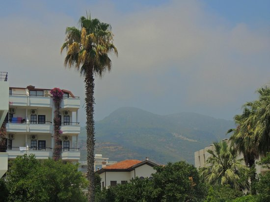 Boulevard Hotel: view
