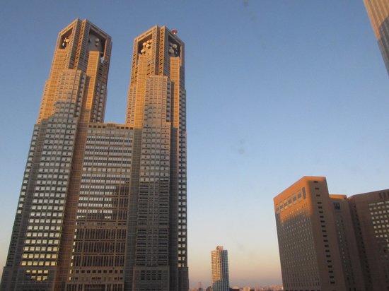 Keio Plaza Hotel Tokyo: 客室からの眺め