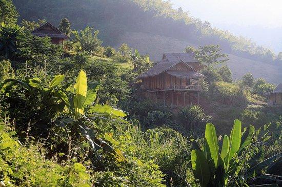 Bamboo Nest de Chiang Rai: cottages ...