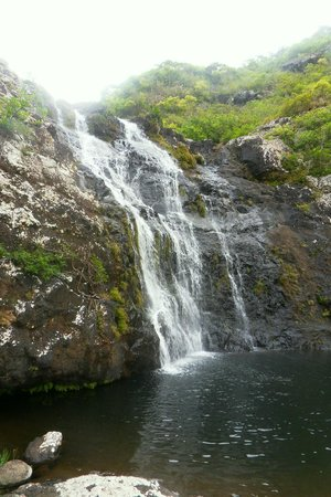 Tamarin Falls: chutes de tamarin