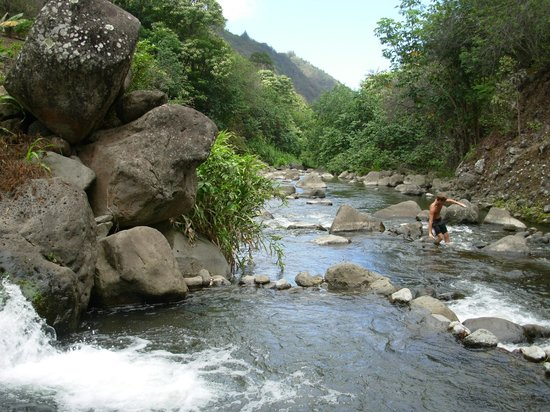 Iao Valley State Monument: Streams in the valley