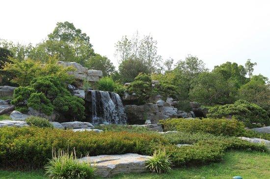 Yangzhou State Guesthouse : Garden in Hotel