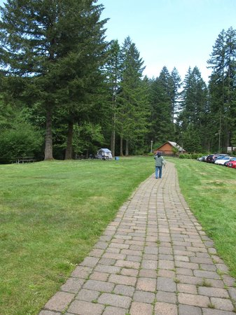 Silver Falls State Park : Around the park 2