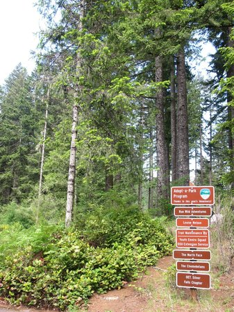 Silver Falls State Park : Around the park 5