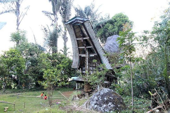 Batutumongga: Tongkonan in the village
