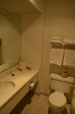 BEST WESTERN Golden Sails Hotel : Toilet