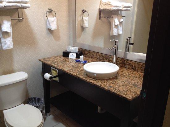 Best Western Plus Fort Lauderdale Airport South Inn & Suites: Bathroom