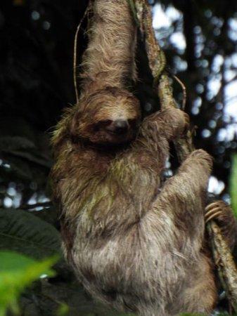 Costa Rica For Everyone: Ecocentro Danaus