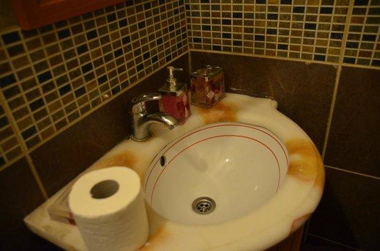 Taksim Lounge Hostel : double room 102 private bath (sink)