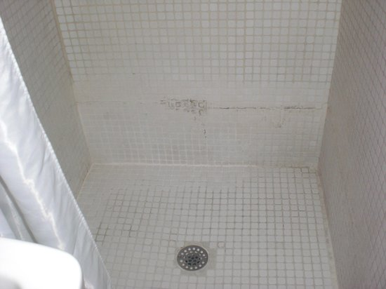 Leamington Hotel: The shower
