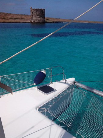 Asinara Catamaran - Day Tours