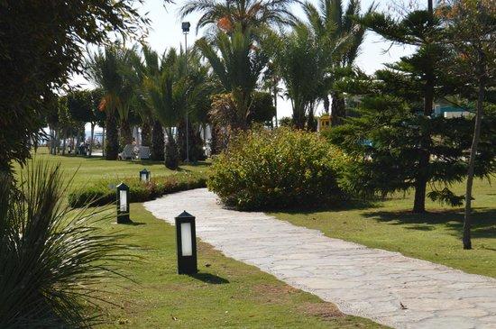 Barut Lara: Дорожки по газонам