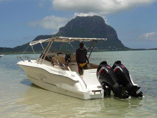Namori Tours Sortie Dauphins : île aux Bénitiers face au morne