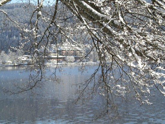 Maritim TitiseeHotel: Hôtel vu du lac