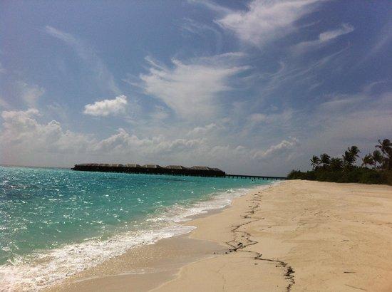 Zitahli Resorts & Spa Maldives Dholhiyadhoo: Great