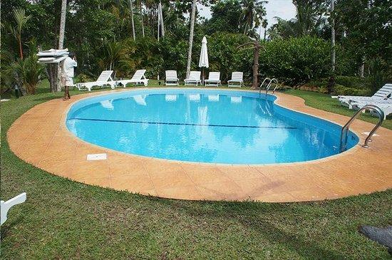 Dalmanuta Gardens - Ayurvedic Resort & Restaurant: Clean Pool