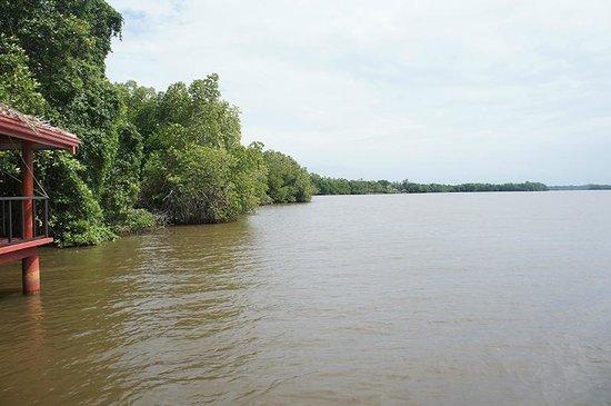 Dalmanuta Gardens - Ayurvedic Resort & Restaurant: The river view