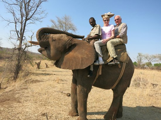 The Stanley and Livingstone: Photo taken during our elephant ride -- orphaned, rescued 11-year-old elephant
