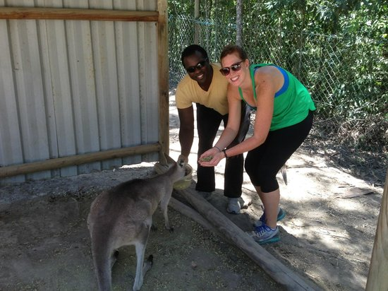 Down and Dirty Quad Bike Tours : feeding and enjoying the kangaroos on the property