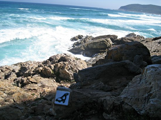 Robberg Nature Reserve5