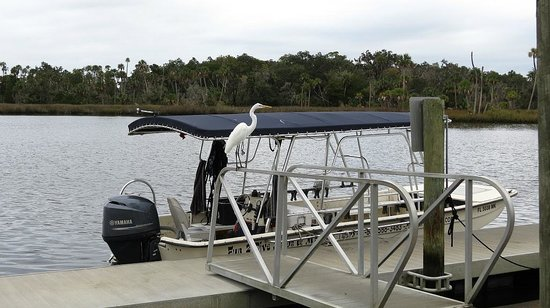 Fun 2 Dive : The small tourboat  for spotting and snorkeling with the manatees
