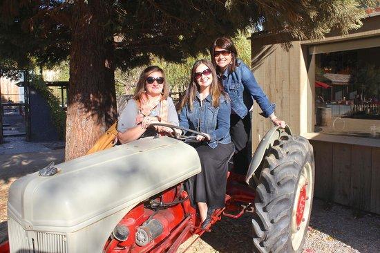Wine Trolley Tours: fun!