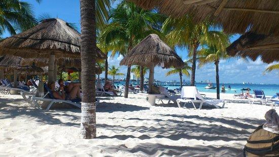 Presidente InterContinental Cancun Resort: praia com muitos coqueiros