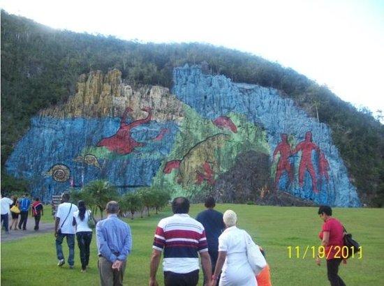 Moluscos picture of mural de la prehistoria vinales for Mural de la prehistoria