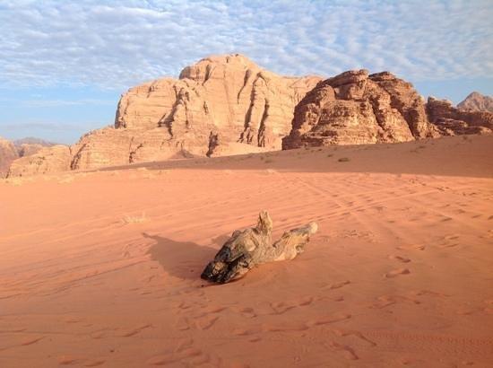 Wadi Rum Green Desert: at sunrise