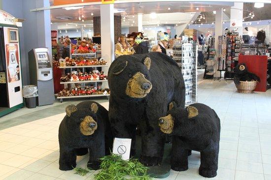 IMAX Theatre Niagara Falls : Cute bears