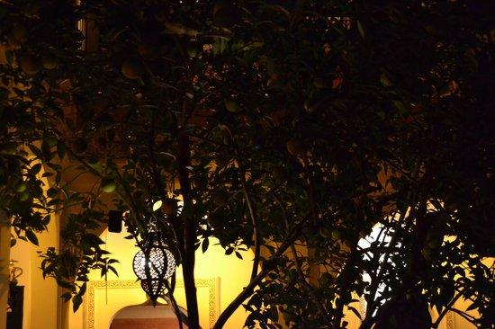 Riad Bousskri: patio