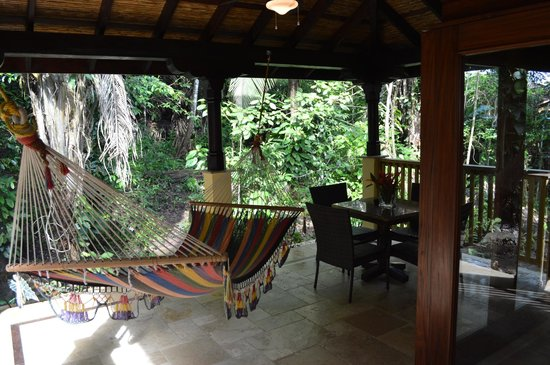 Sleeping Giant Lodge: Backyard a.k.a the rainforest!