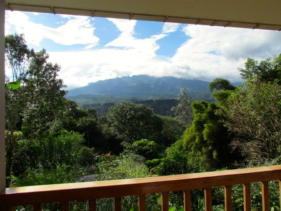 La Montana y el Valle Coffee Estate Inn: View from our balcony