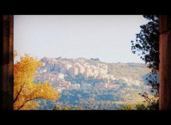 Villa Adriana : A great view of Tivoli from the Villa