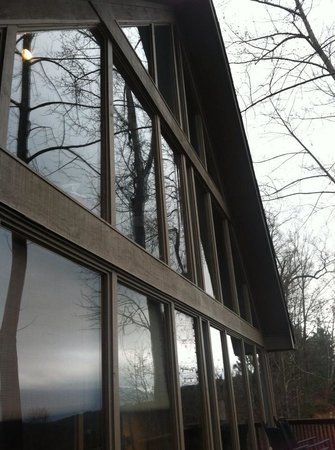 Wilderness View Cabins: Glass windows