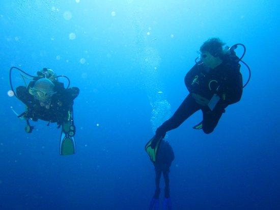 Reef 2000 : Expert Divers?