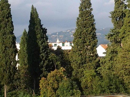 FH Grand Hotel Mediterraneo: Vista desde la habitación.