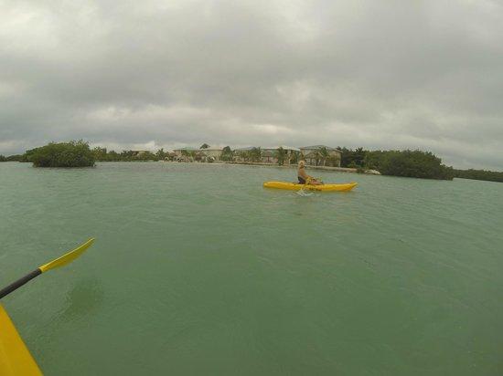 Royal Palm Island Resort: Great kayaking around the island resort